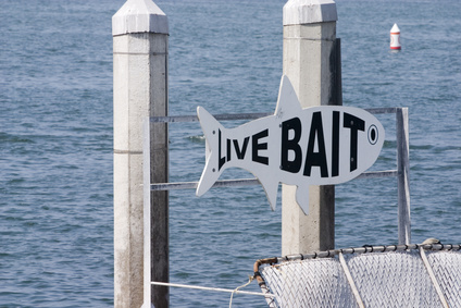 Live bait sign at a local marina