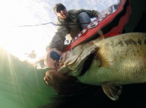 Basic bass fishing rules and regulations for Michigan fish size limits